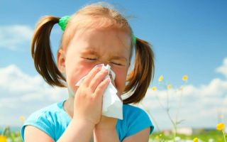 Аллергия на пыльцу у ребенка.