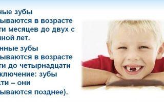 Cколько молочных зубов у детей должно быть.