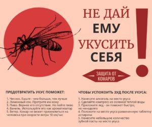 как избежать укусов